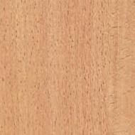 Közepes bükk öntapadós tapéta
