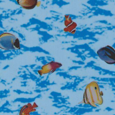 FISHES / HALAK öntapadós üvegtapéta