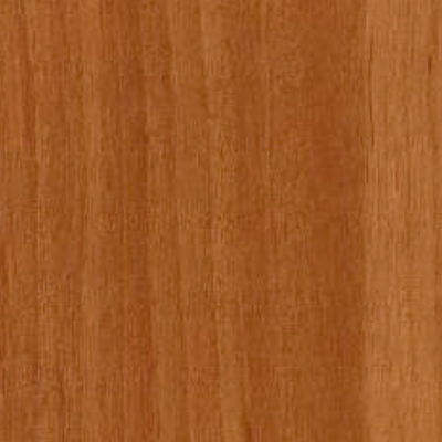 Klebert Közepes éger öntapadós tapéta