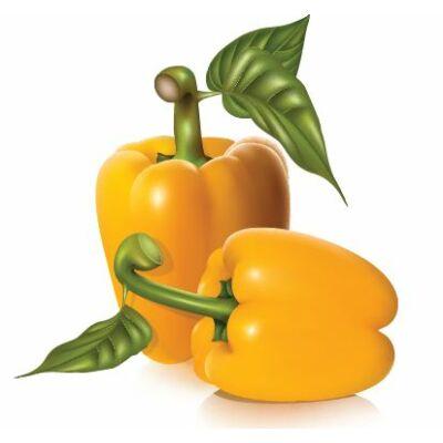 Sárga paprika csempematrica